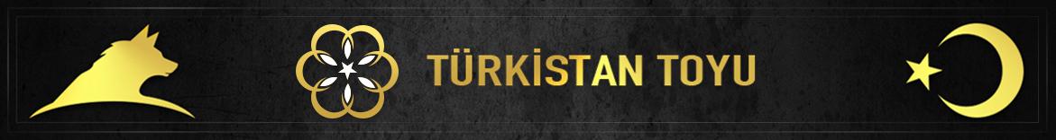 Türkistan Derneği
